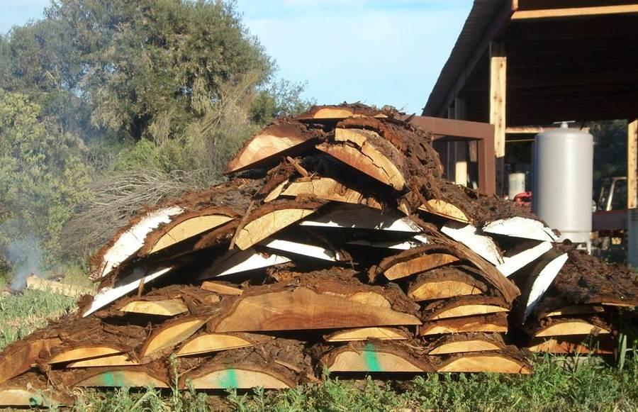 Creston Sawmill Products