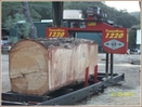 Logging, Log Trucking, Timberking Band Mill, Douglas Fir,