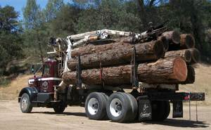 Creston Sawmill, Logging Truck, Logger, Logs, Timber, Lumber, Trucking