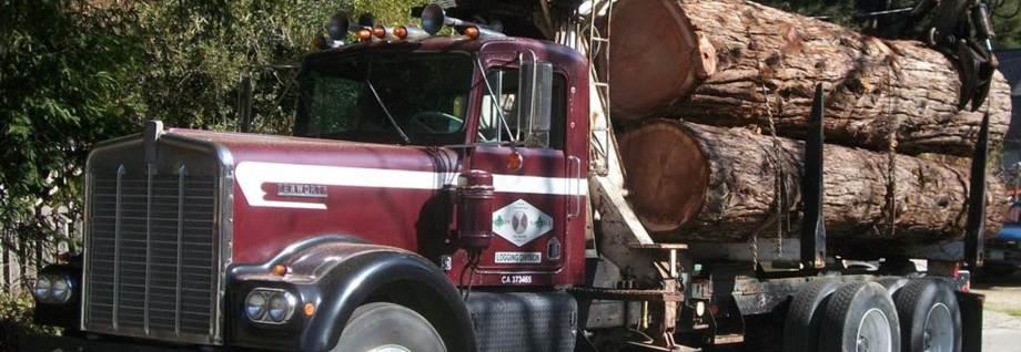 Redwood, Log Trucking, Sawmill